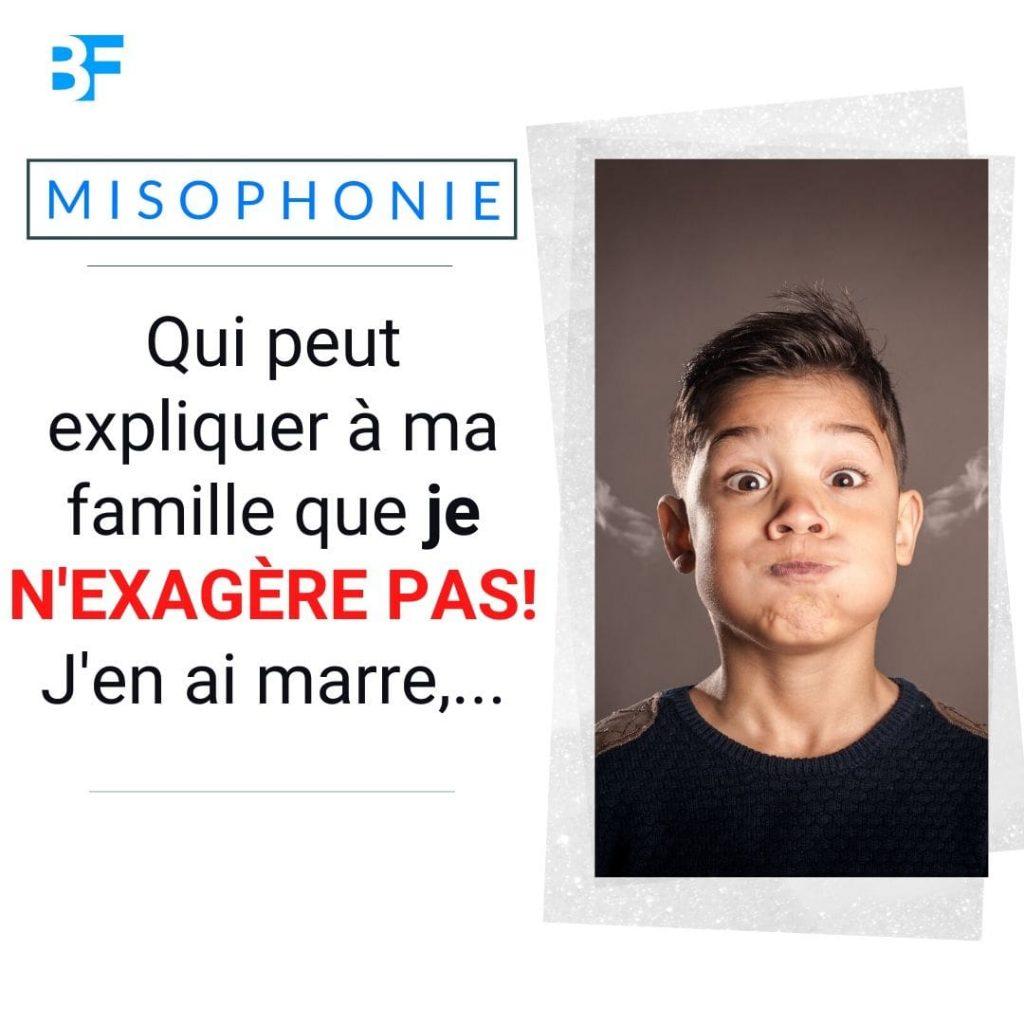 Qui peut expliquer à ma famille que je n'exagère pas à propos de ma misophonie-min